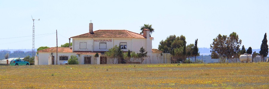 The horse ranch in Spain